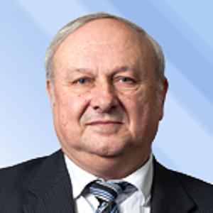 Vladimir A. Grishagin